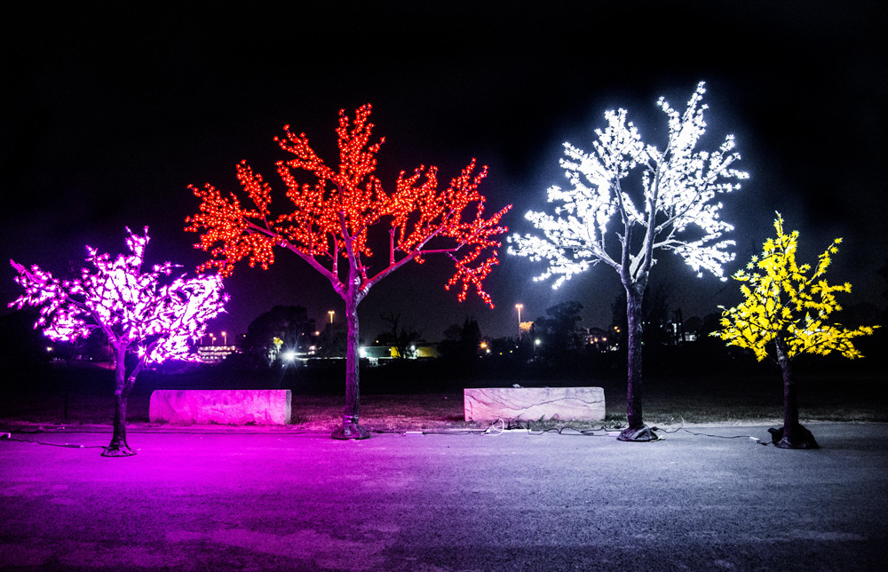 Epic Party Hire Neon LED Trees available colours